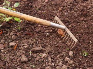 PTAで草取りや溝掃除、落ち葉拾いは不参加を減らすにはどうしたらいいか考えると